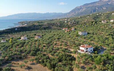 Villa Orea Elena Santova / Birds eye view from the South